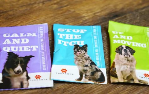 Is Marajuana Good for Dogs?