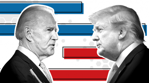Trump Vs Biden, a Fight to Finish.