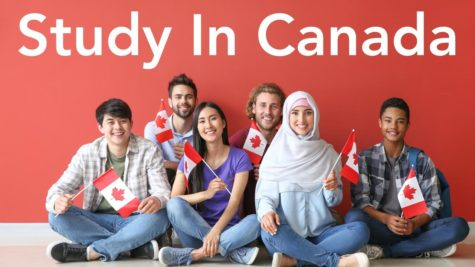 Group of students with Canadian flags sitting near color wall